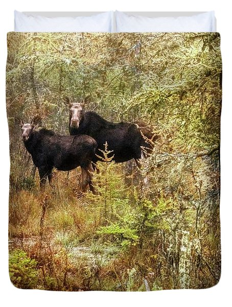 A Mother And Calf Moose. Duvet Cover