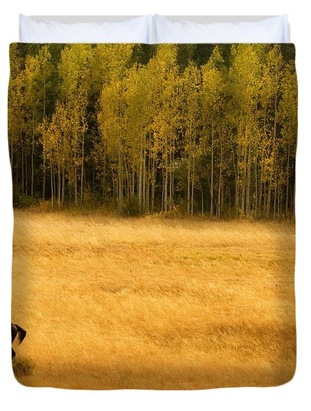A Nice Autumn Day Duvet Cover by James BO  Insogna