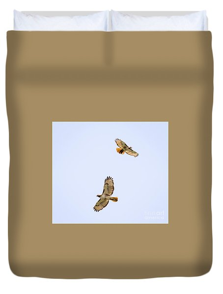 Duvet Cover featuring the photograph A Pair Of Red-tailed Hawks Flying Around by Ricky L Jones