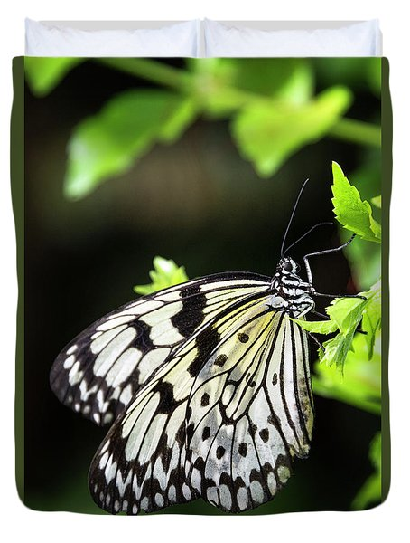 Duvet Cover featuring the photograph A Paper Kite Butterfly On A Leaf  by Saija Lehtonen