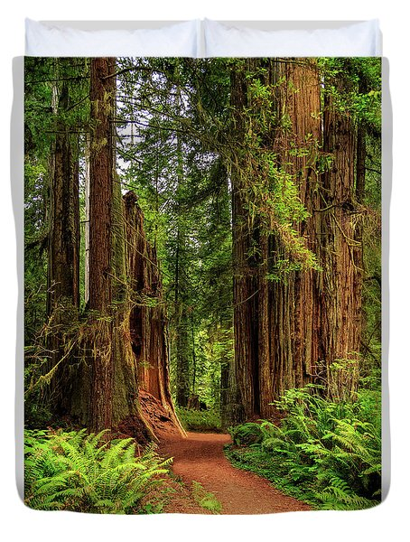Duvet Cover featuring the photograph A Path Through The Redwoods by James Eddy
