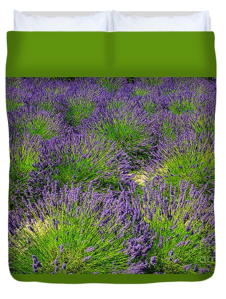 A Pattern Of Lavender Duvet Cover