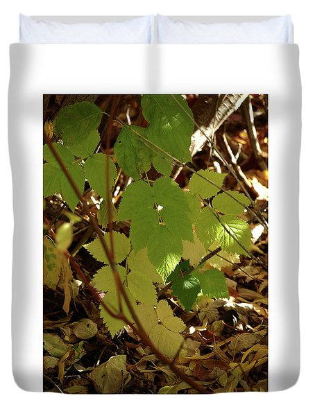A Plant's Various Colors Of Fall Duvet Cover by DeeLon Merritt