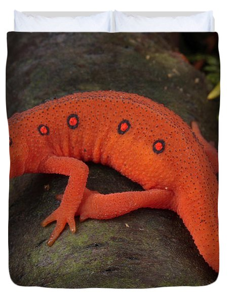 A Red Eft Crawls On The Forest Floor Duvet Cover