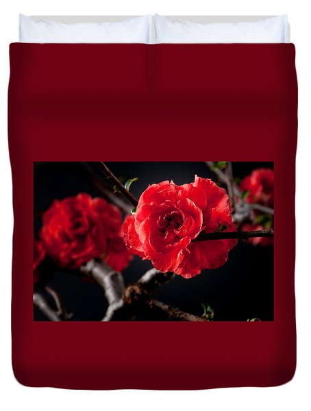 A Red Flower Duvet Cover by Catherine Lau