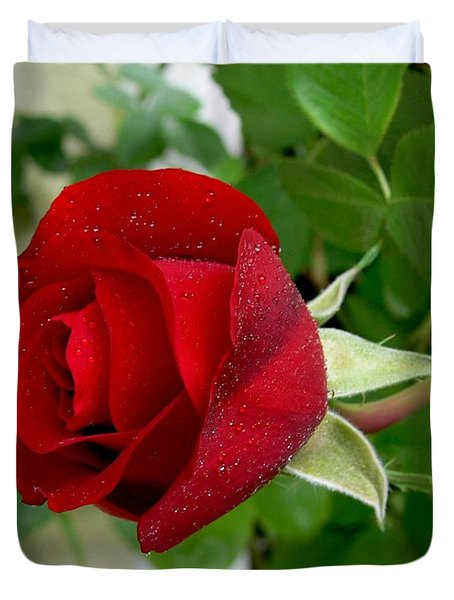 A Red Rose In The Dew Of Pearls Hours Duvet Cover by Helmut Rottler