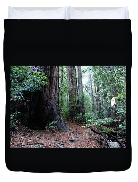 A Redwood Trail Duvet Cover by Ben Upham III
