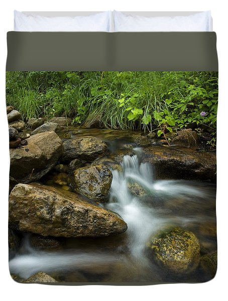 A Restful Spot Duvet Cover by Sue Cullumber