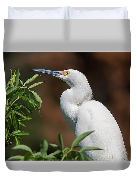 A Resting Snowy Egret  Duvet Cover by Kenneth Albin