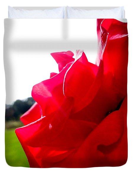 A Rose In The Sun Duvet Cover