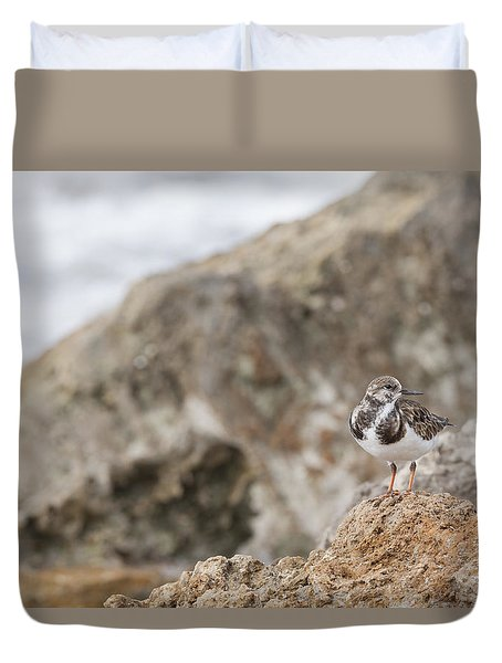 A Ruddy Turnstone Perched On The Rocks Duvet Cover