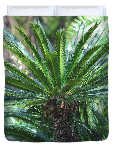 Duvet Cover featuring the photograph A Shady Palm Tree by Raphael Lopez