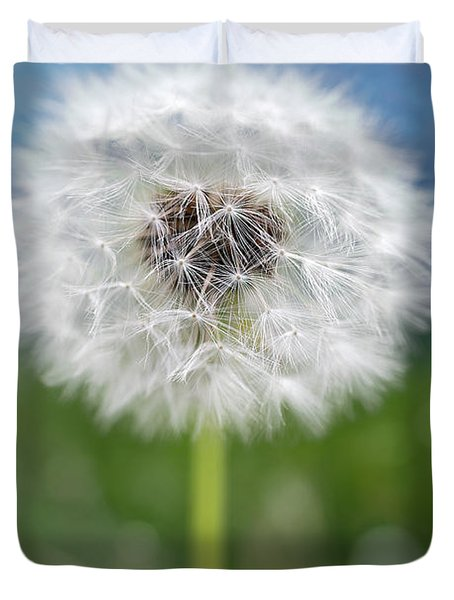A Single Dandelion Seed Pod Duvet Cover