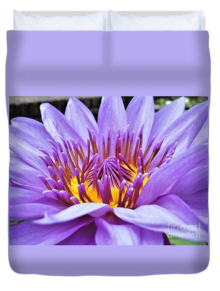 A Sliken Purple Water Lily Duvet Cover