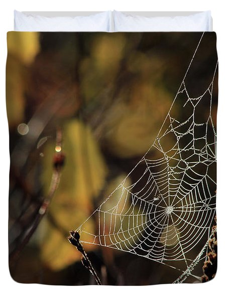 A Spiders Creation Duvet Cover by Karol Livote