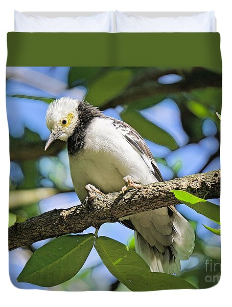A Starling To Remember Duvet Cover