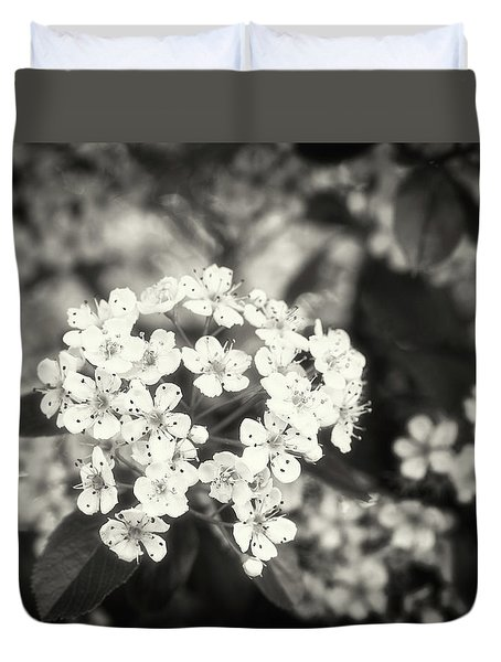 A Thousand Blossoms In Sepia 3x4 Flipped Duvet Cover