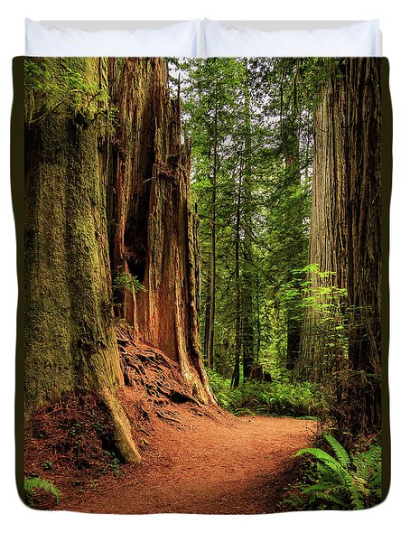 Duvet Cover featuring the photograph A Trail In The Redwoods by James Eddy
