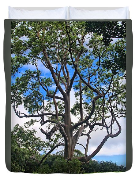 Duvet Cover featuring the photograph A Tree In Paradise by DJ Florek