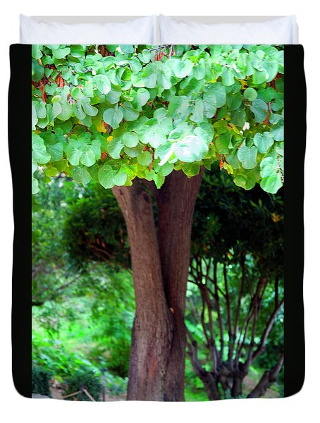 Duvet Cover featuring the photograph A Tree Lovelier Than A Poem by Madeline Ellis