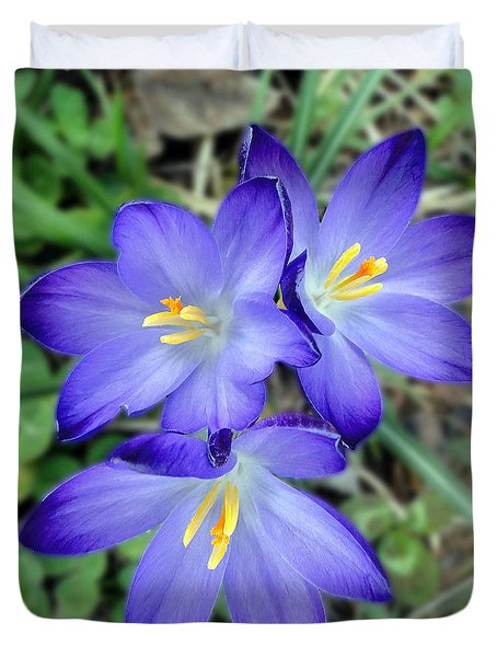 A Trio Of Crocuses Duvet Cover