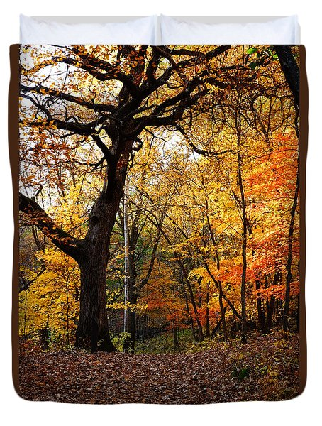A Walk In The Woods 2 Duvet Cover by Steven Clipperton