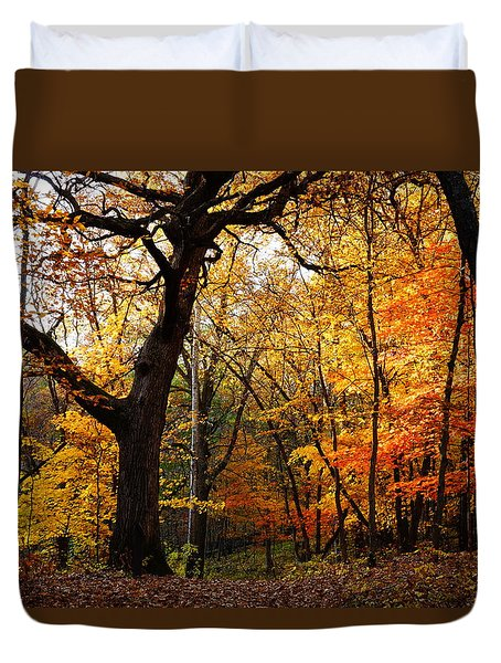 Duvet Cover featuring the photograph A Walk In The Woods 3 by Steven Clipperton