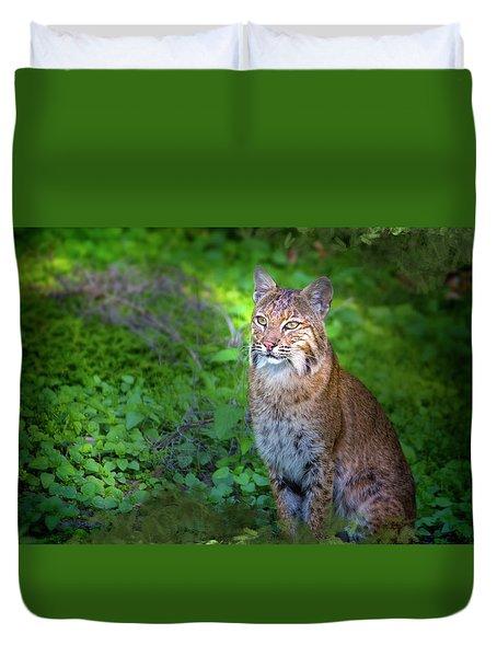 A Watchful Eye Duvet Cover