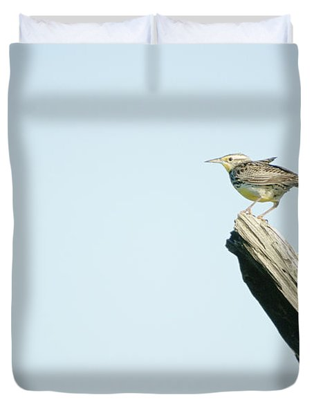 A Western Meadowlark Sits On A Piece Duvet Cover