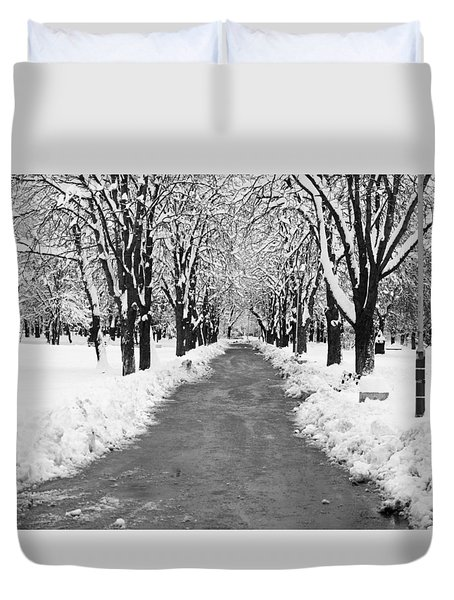 A Winter's Path Duvet Cover by Rae Tucker