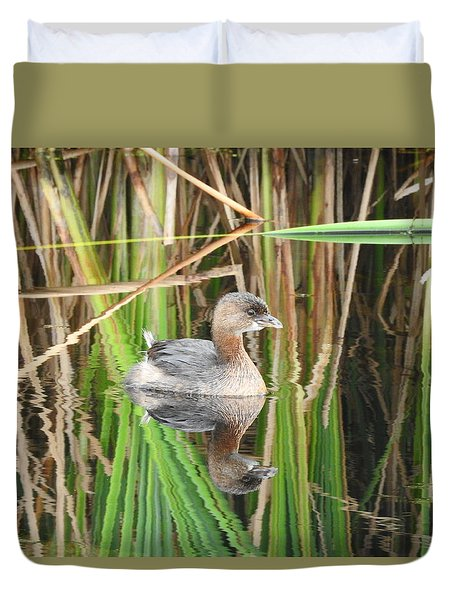 A Young Pied-billed Grebe And Its Reflection Duvet Cover