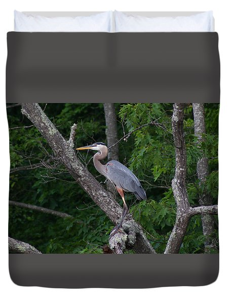 Above The Shallows Duvet Cover by Geri Glavis