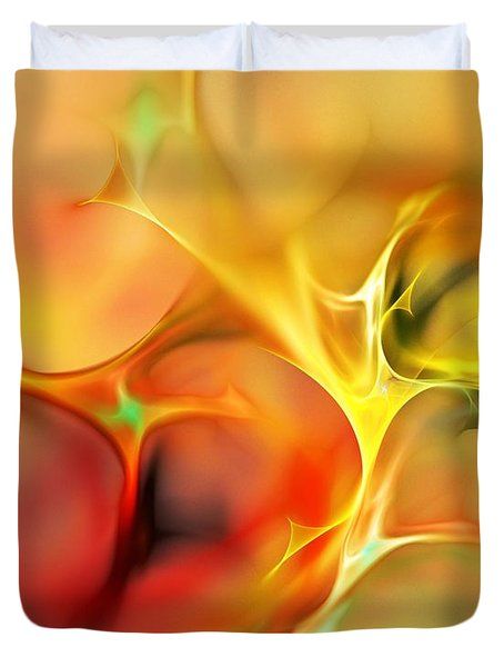 Abstract 061410a Duvet Cover