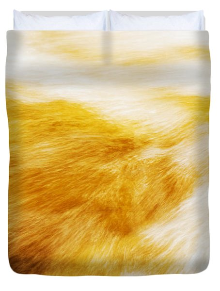 Abstract Flow Two Duvet Cover