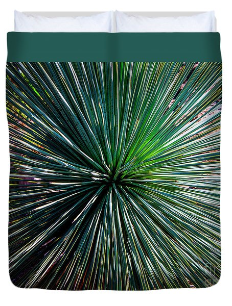 Abstract Nature Desert Cactus Photo 207 Blue Green Duvet Cover