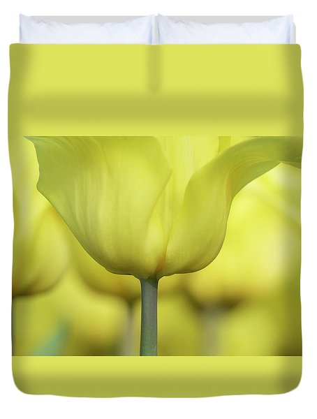Abstract Yellow Tulips Flowers Photography Online Art Print Shop Duvet Cover