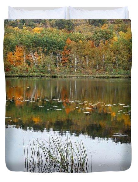 Acadia Autumn Duvet Cover