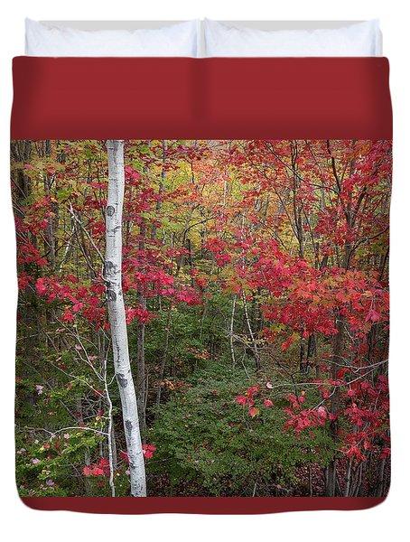 Acadia Fall Colors Duvet Cover