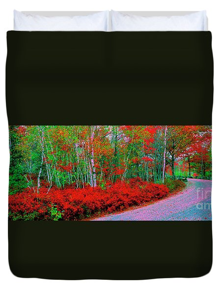 Acadia National Pk Carriage Trails Maine Duvet Cover