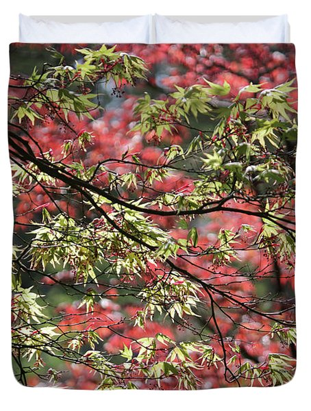 Acer Leaves In Spring Duvet Cover