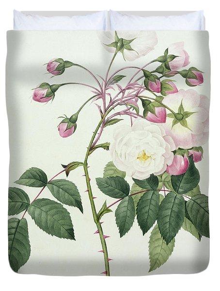 Adelia Aurelianensis Duvet Cover