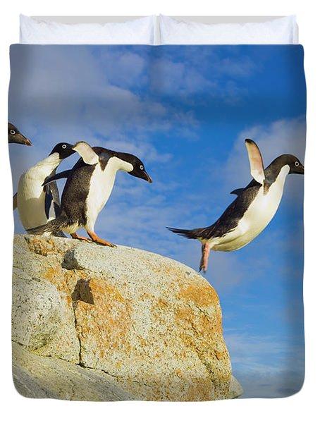 Adelie Penguins Jumping Duvet Cover