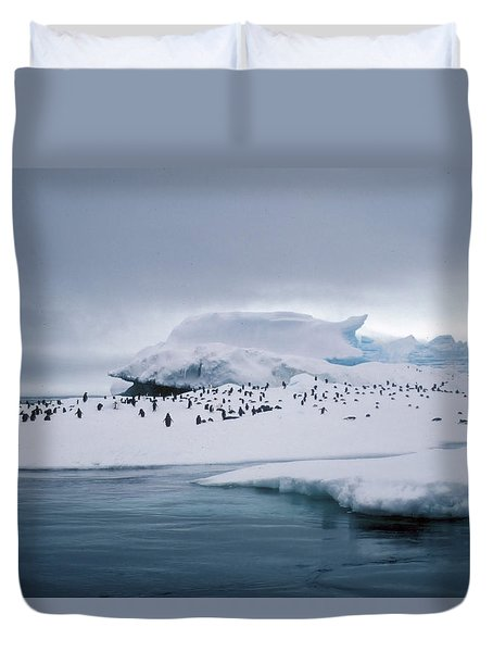 Adelie Penguins On Iceberg Weddell Sea Duvet Cover by Brian Lockett