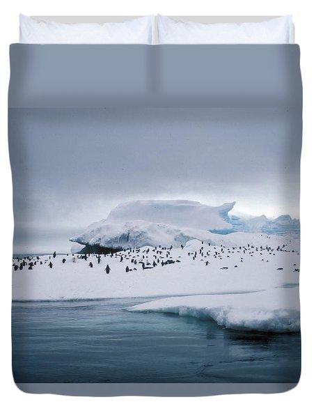 Adelie Penguins On Iceberg Weddell Sea Duvet Cover