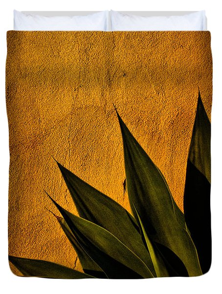Adobe And Agave At Sundown Duvet Cover