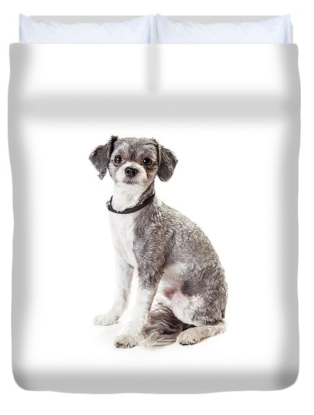 Adorable Havanese Crossbreed Dog Sitting Duvet Cover