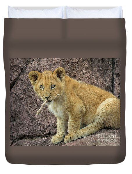 Adorable Lion Cub Duvet Cover