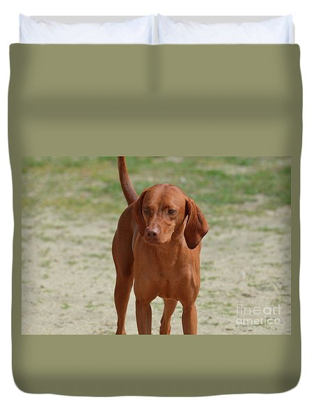 Adorable Redbone Coonhound Standing Alone Duvet Cover