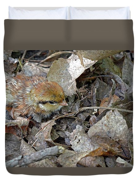 Adorable Ruffed Grouse Chick Duvet Cover