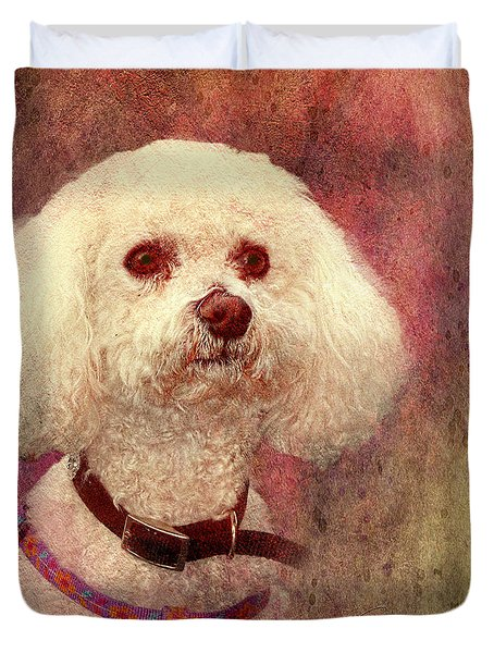 Adoration - Portrait Of A Bichon Frise  Duvet Cover